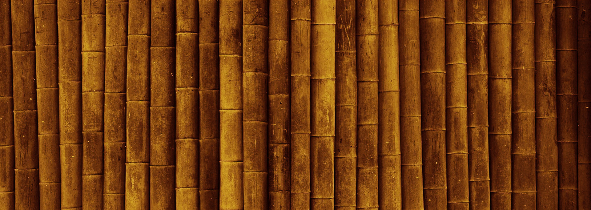 bambu_background